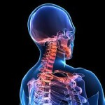 Can Physiotherapy Help With a Crick In My Neck?