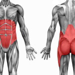 What Are Core Muscles and How Do I Strengthen Them?
