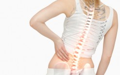 Physiotherapy for a Herniated Disc